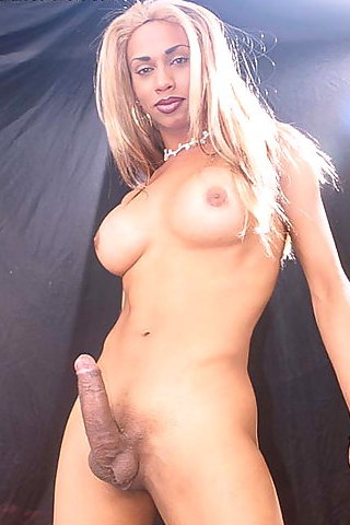 D Shemale Porn 9