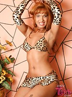 Transsexual rogue in leopard outfit