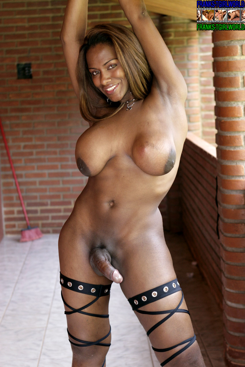 shemale negra Search - XVIDEOSCOM