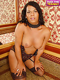 Mature Shemale Temptress Tries Herself Inside Xxx