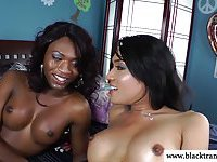 Ebony tgirl and ladyboy blow their loads