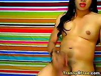 Cute Tranny Unloads Hot Jizz