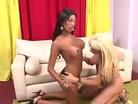 Blonde and brunette trannies ass banging