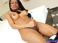 Busty ebony shemale Cintia Matarazzo wanks her big dick