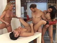 Hot compilation with shemales