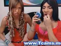 Two Hot Tranny - Wild In Bed