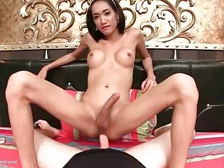 Ladyboy om my hard dick