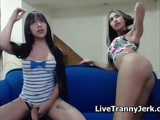 Hot Transgender Teens on Webcam